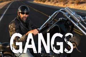 Gangs graphic