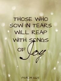 sow in tears - reap in joy